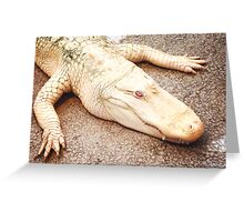 Albinogator Greeting Card