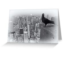 Pigeon's View  Greeting Card