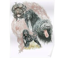 Portuguese Water Dog /Ghost Poster