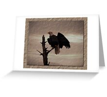 One Tree, One Eagle Greeting Card