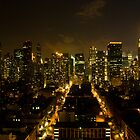 New York City Lights by Dilshara Hill