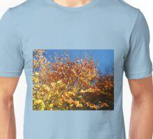 Sunlight on Russet Leaves Unisex T-Shirt