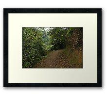 Tai Mo Shan Country Park Framed Print