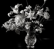 A Year Of Flowers in Black and White  - Photos by Endre Balogh by Endre