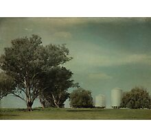 Avelin Photographic Print