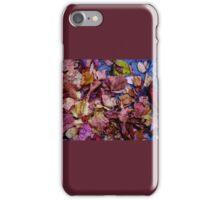 Autumn Crisp iPhone Case/Skin