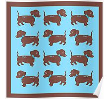 Brown Dachshunds with Blue Bows Pattern Art Poster