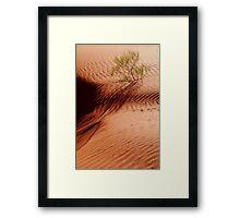 I will Survive!...Simpson Desert Framed Print