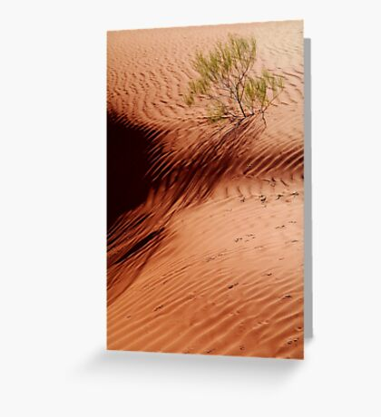 I will Survive!...Simpson Desert Greeting Card