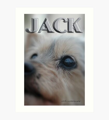 JACK © Vicki Ferrari Photography Art Print