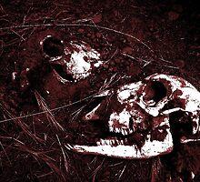 Skull Print 2 by MRSMOLETATAM