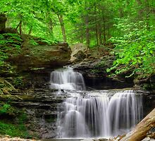 Emerald Trees Surround R. B. Ricketts Falls by Gene Walls