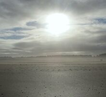 Winter Sun - Holkham, Norfolk by PhotoMonkeyUK