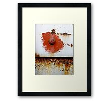 Rust Bloom Framed Print