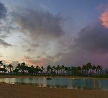 Tropical Sky and Palm Trees - Impressions of Hawaii by Georgia Mizuleva