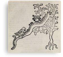 Hic Codex Auienii Continent Epigrama Astronomy Rufius Festivus Avenius 1488 Astronomy Illustrations 0187 Constellations Canvas Print