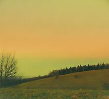 green to orange view by picontagious