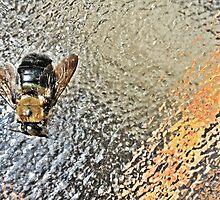bee by gatheringwonder