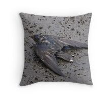 Stealth Bomber? Throw Pillow