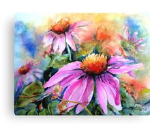 Sunset Coneflowers Canvas Print