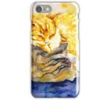 Cozy Kitties iPhone Case/Skin