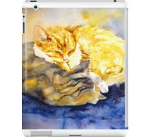 Cozy Kitties iPad Case/Skin
