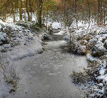 High Dam - The December Stream by Jamie  Green
