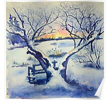 Winter Magnolia Sunrise Poster