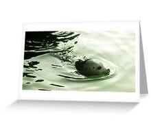 Seal - Water effect Greeting Card