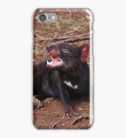 Tasmanian Devil (1) iPhone Case/Skin