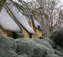 Cotswolds Winter Wonderland 4 by janrique