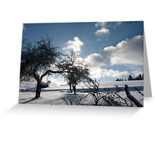 wild white landscape Greeting Card