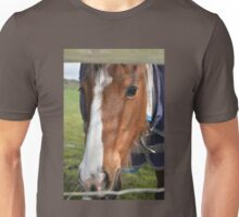 LOOKING THROUGH THE FENCE Unisex T-Shirt
