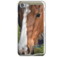 LOOKING THROUGH THE FENCE iPhone Case/Skin