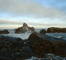 Seascape in Aberdeenshire by JaneMerson