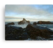 Seascape in Aberdeenshire Canvas Print