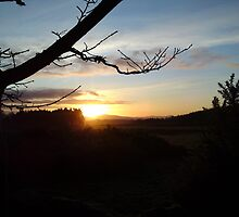 Dusk over Royal Deeside by JaneMerson
