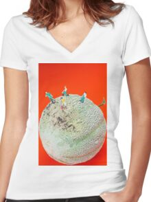 Dirty Cleaning On Sweet Melon Women's Fitted V-Neck T-Shirt