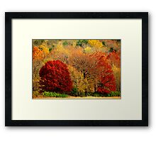 Mother Nature's Painting Her Landscapes,  Again! Framed Print