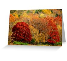 Mother Nature's Painting Her Landscapes,  Again! Greeting Card