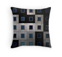 DSC_3633b4knta Throw Pillow