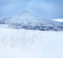 The Big Sugarloaf under snow by Ramona Farrelly
