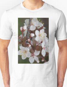 Cherry plum blossom T-Shirt