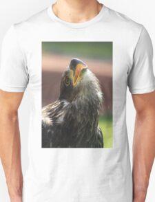 Juvenile Bald Eagle Unisex T-Shirt