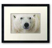 Can't you help a little? Framed Print