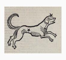 Hic Codex Auienii Continent Epigrama Astronomy Rufius Festivus Avenius 1488 Astronomy Illustrations 0175 Constellations Kids Tee