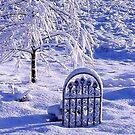 WINTERS GATE by RoseMarie747