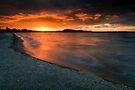 Lake Rotorua 8/11/2010 by Michael Treloar