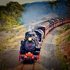 Age of Steam by wallarooimages