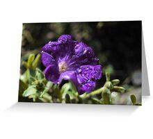 Deep purple flower Greeting Card